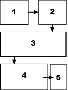 organizePicsWorkflow