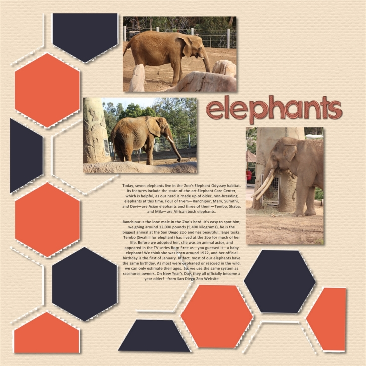 Elephant Layout