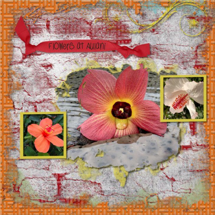 Flowers_Combo3